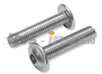 ISO 7380-2 Rvs laagbolkopflensschroef met binnenzeskant